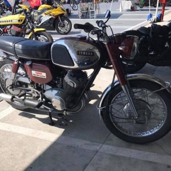 motobabe34